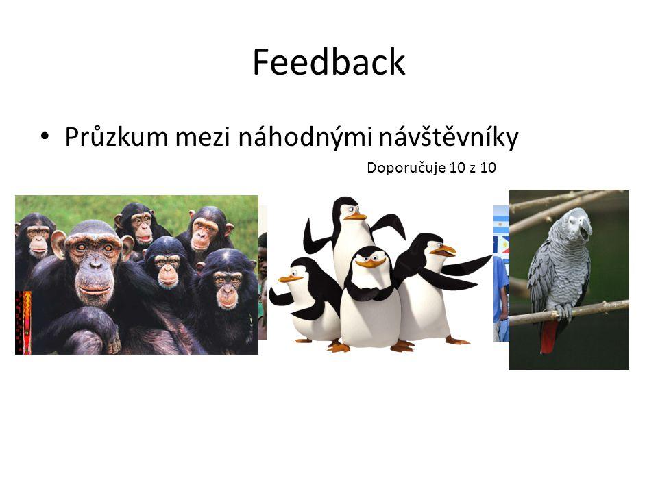 Feedback Průzkum mezi náhodnými návštěvníky Doporučuje 10 z 10
