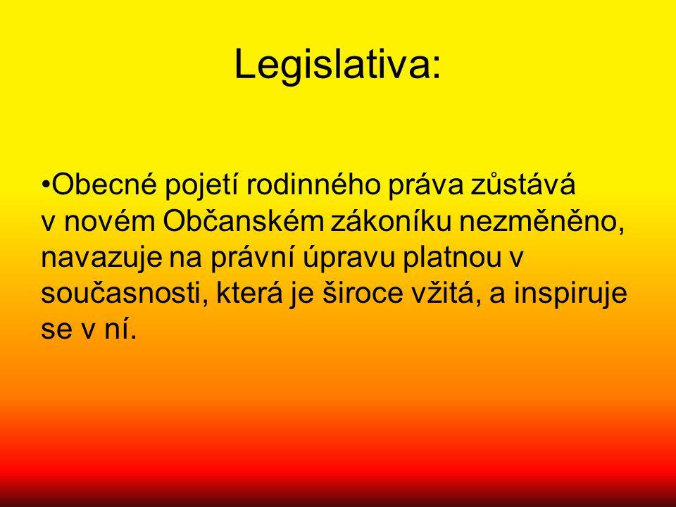 Legislativa: Obecné pojetí rodinného práva zůstává v novém Občanském zákoníku nezměněno, navazuje na právní úpravu platnou v současnosti, která je šir