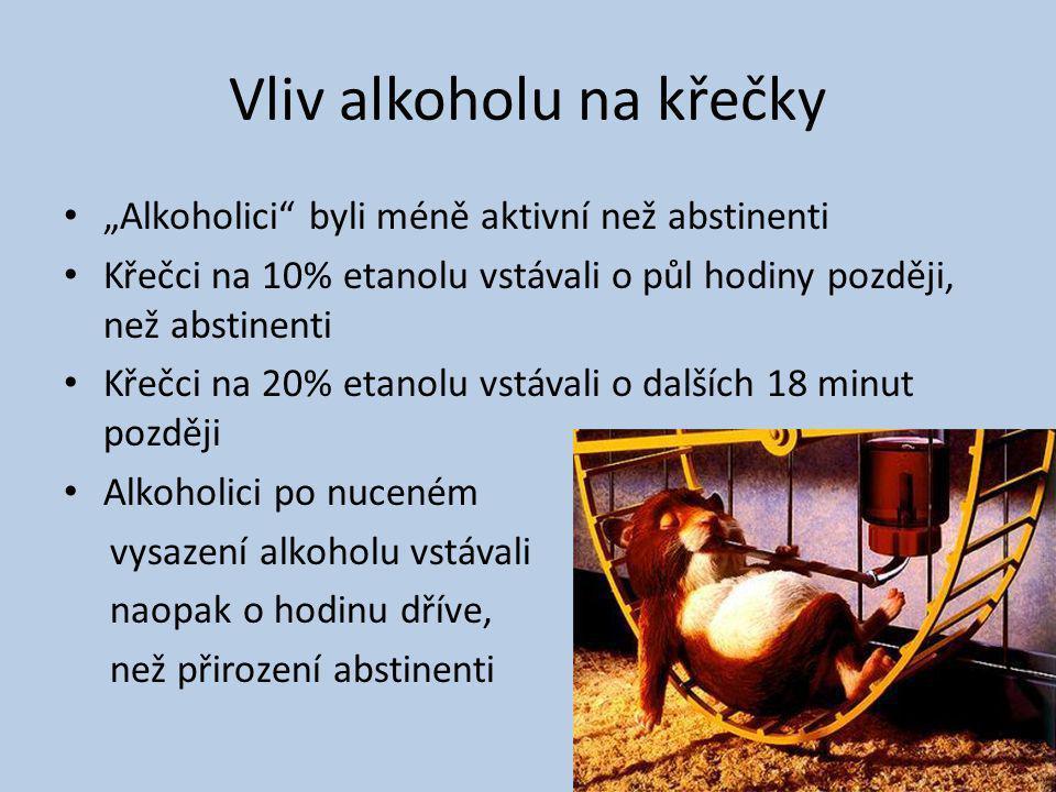 """Vliv alkoholu na křečky """"Alkoholici"""" byli méně aktivní než abstinenti Křečci na 10% etanolu vstávali o půl hodiny později, než abstinenti Křečci na 20"""