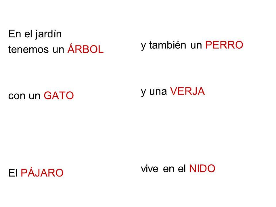En el jardín tenemos un ÁRBOL con un GATO El PÁJARO y también un PERRO y una VERJA vive en el NIDO