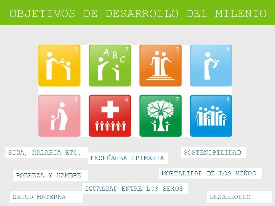 OBJETIVOS DE DESARROLLO DEL MILENIO POBREZA Y HAMBRE ENSEÑANZA PRIMARIA IGUALDAD ENTRE LOS SEXOS MORTALIDAD DE LOS NIÑOS SALUD MATERNA SIDA, MALARIA ETC.