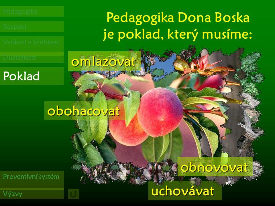 Respekt Pedagogika Velikost a k ř ehkost D ů stojnost Poklad Preventivní systém Výzvy v ů či jeho d ů stojnosti Božího dít ě te.