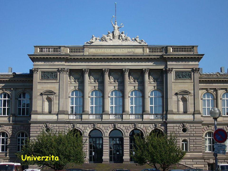 Palác Rhin