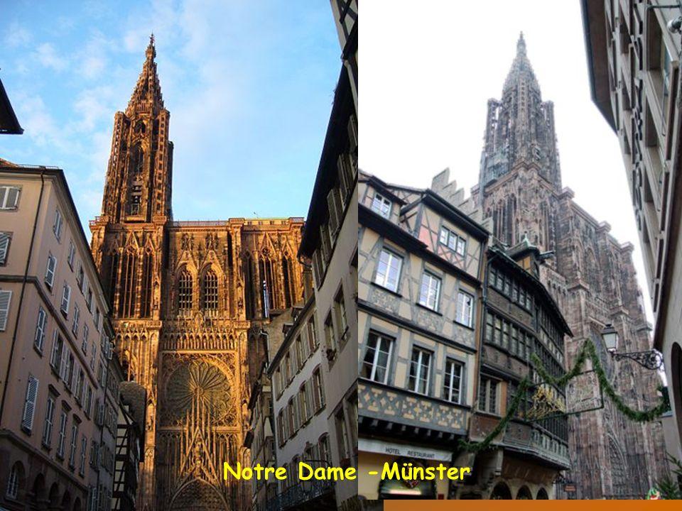 Pohled na staré město z Münsteru