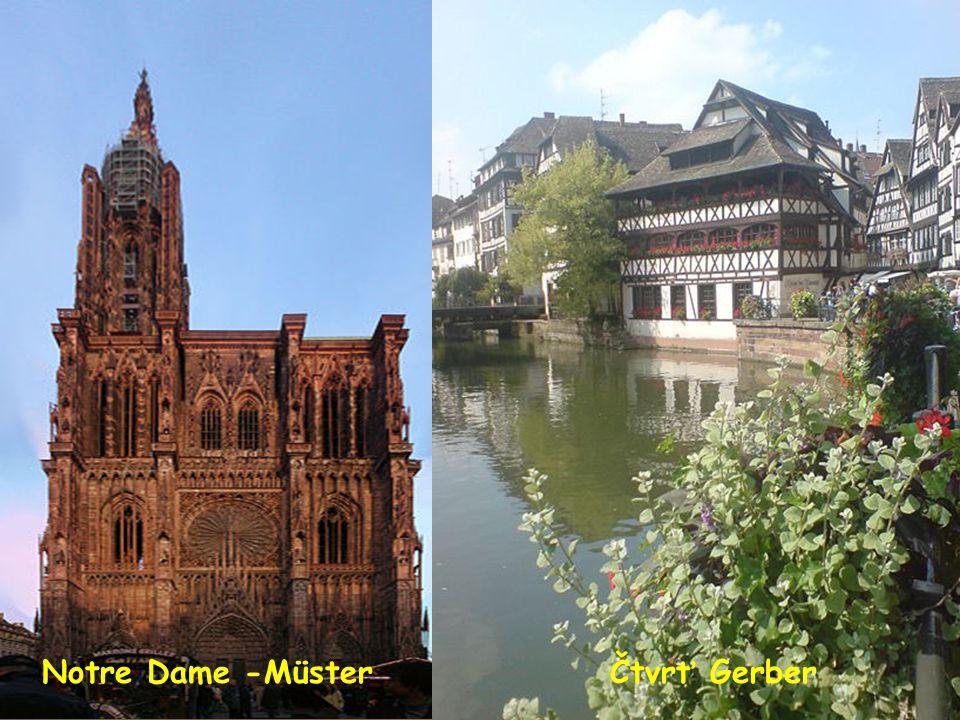 Notre Dame -Münster