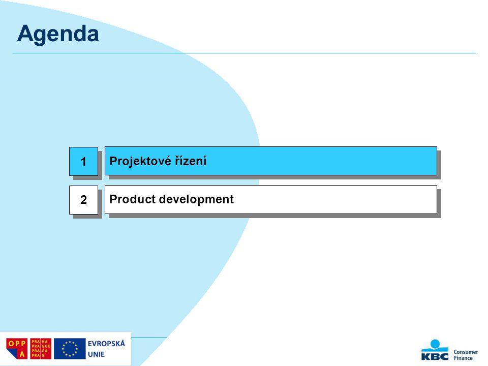 Co znamená projektové řízení?