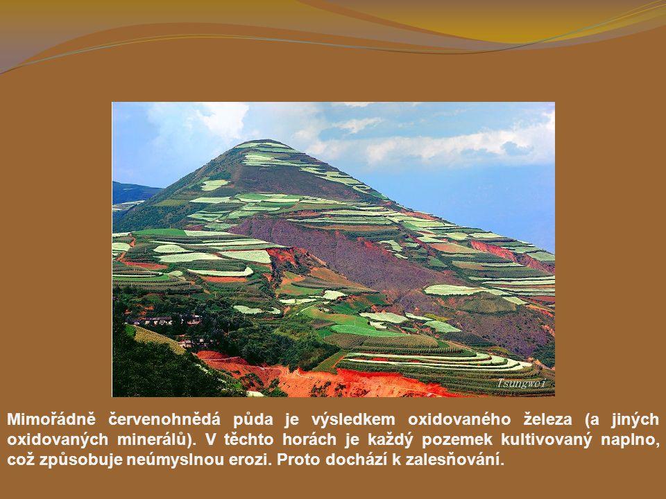 Mimořádně červenohnědá půda je výsledkem oxidovaného železa (a jiných oxidovaných minerálů).
