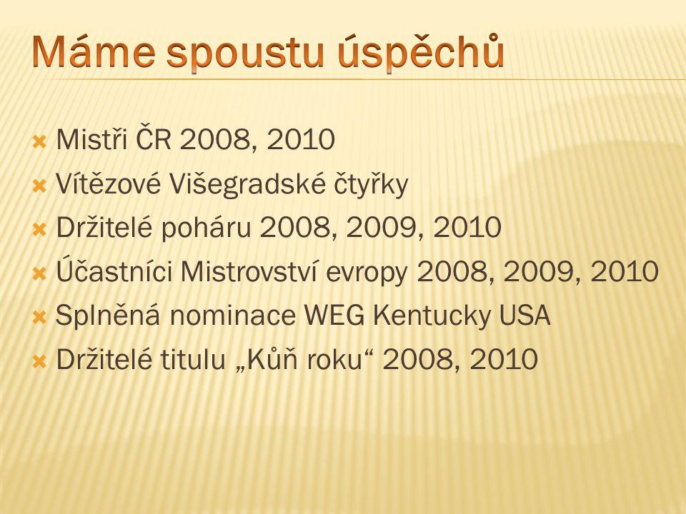 Mistři ČR 2008, 2010  Vítězové Višegradské čtyřky  Držitelé poháru 2008, 2009, 2010  Účastníci Mistrovství evropy 2008, 2009, 2010  Splněná nomi