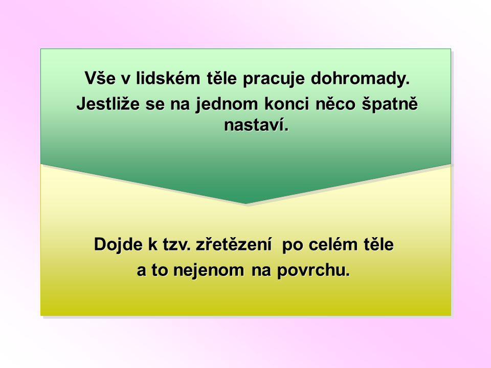 Místa nejčastějších spazmů Převzato z knihy Syndrom kostrče a pánevního dna, Jiří Marek a kol., 2000