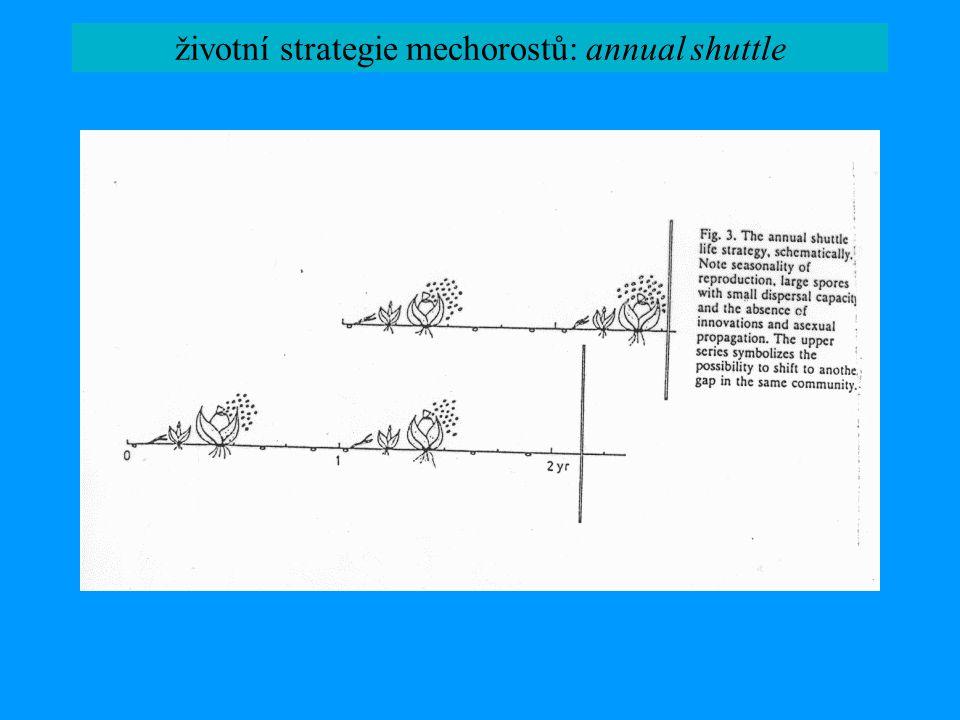životní strategie mechorostů: annual shuttle