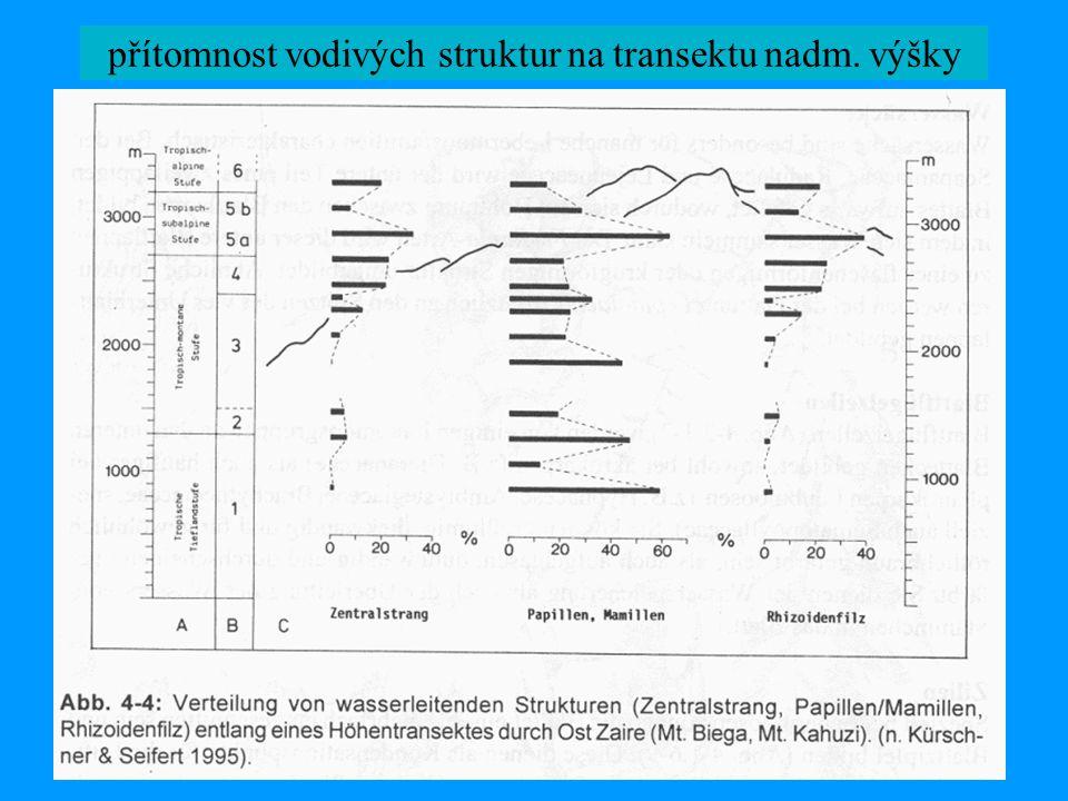 přítomnost vodivých struktur na transektu nadm. výšky