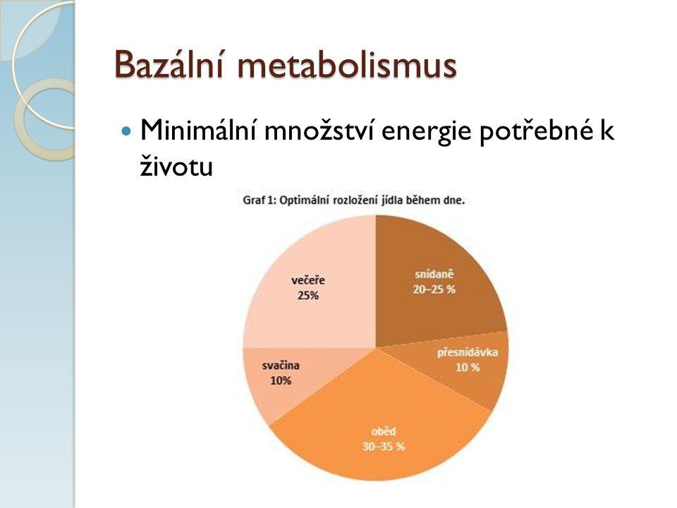 Bazální metabolismus Minimální množství energie potřebné k životu