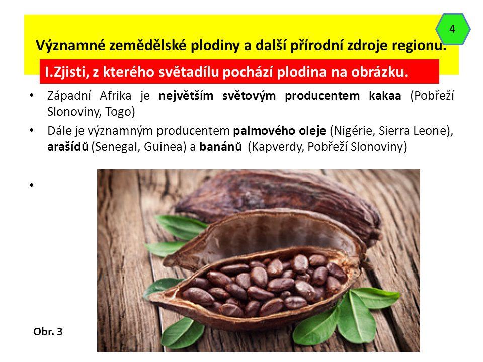 Významné zemědělské plodiny a další přírodní zdroje regionu. Západní Afrika je největším světovým producentem kakaa (Pobřeží Slonoviny, Togo) Dále je