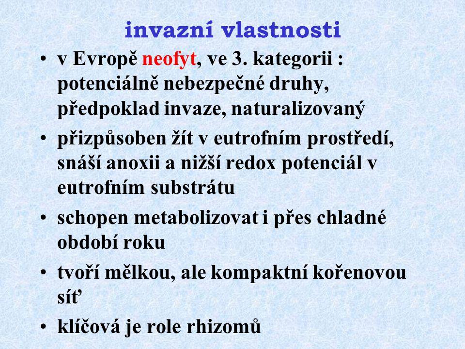 invazní vlastnosti v Evropě neofyt, ve 3. kategorii : potenciálně nebezpečné druhy, předpoklad invaze, naturalizovaný přizpůsoben žít v eutrofním pros