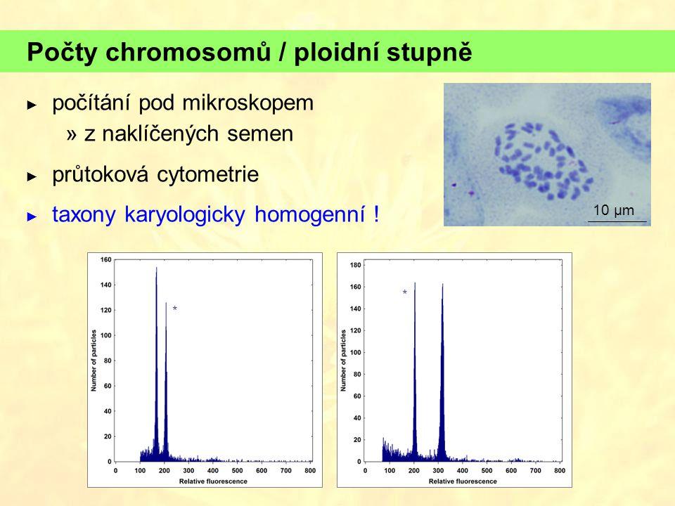 Počty chromosomů / ploidní stupně ► počítání pod mikroskopem  z naklíčených semen ► průtoková cytometrie ► taxony karyologicky homogenní .