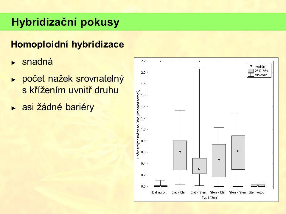 Hybridizační pokusy Homoploidní hybridizace ► snadná ► počet nažek srovnatelný s křížením uvnitř druhu ► asi žádné bariéry