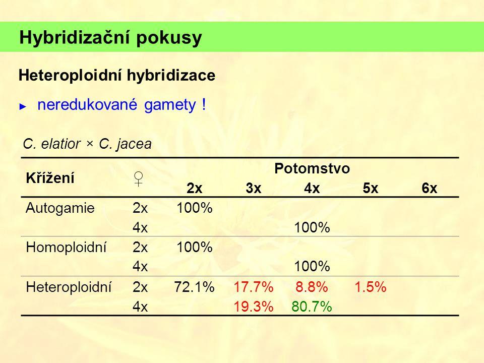 Hybridizační pokusy Křížení ♀ Potomstvo 2x3x4x5x6x Autogamie2x100% 4x100% Homoploidní2x100% 4x100% Heteroploidní2x72.1%17.7%8.8%1.5% 4x19.3%80.7% C. e