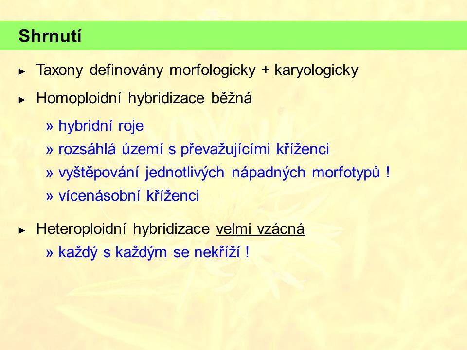 Shrnutí ► Taxony definovány morfologicky + karyologicky ► Homoploidní hybridizace běžná  hybridní roje  rozsáhlá území s převažujícími kříženci  vy
