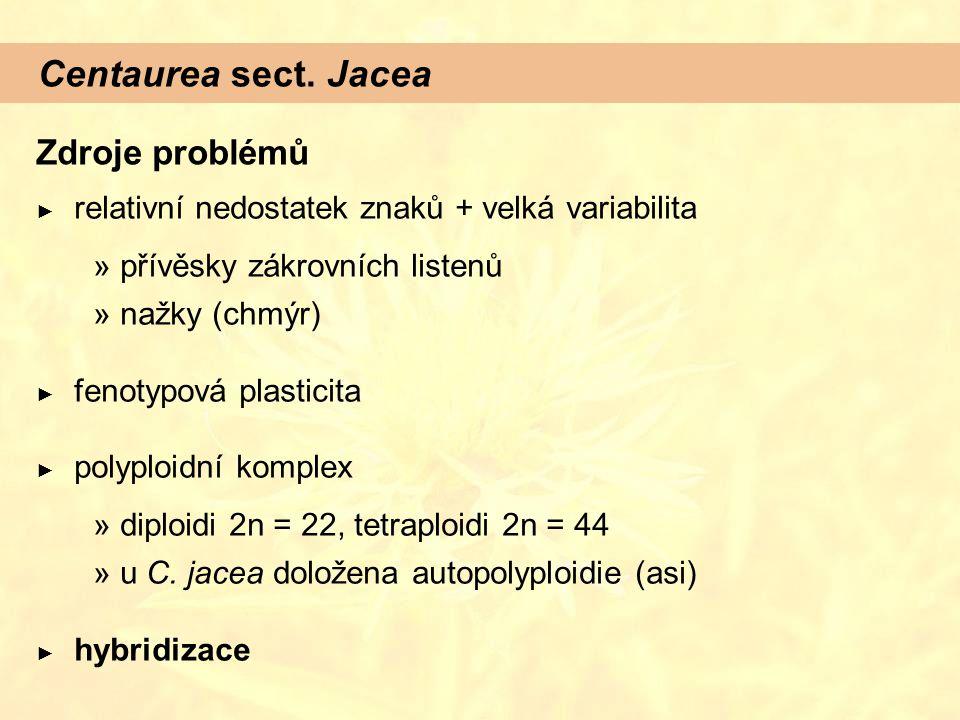 Centaurea sect. Jacea Zdroje problémů ► relativní nedostatek znaků + velká variabilita  přívěsky zákrovních listenů  nažky (chmýr) ► fenotypová plas