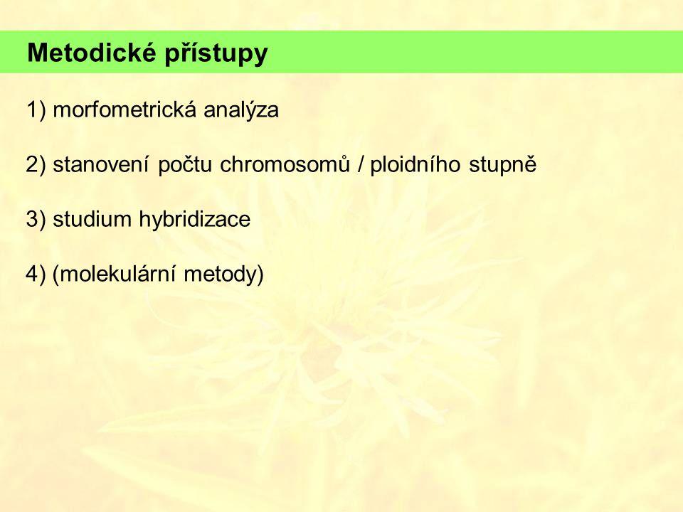 Metodické přístupy 1)morfometrická analýza 2)stanovení počtu chromosomů / ploidního stupně 3) studium hybridizace 4) (molekulární metody)