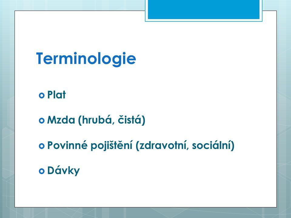 Terminologie  Plat  Mzda (hrubá, čistá)  Povinné pojištění (zdravotní, sociální)  Dávky