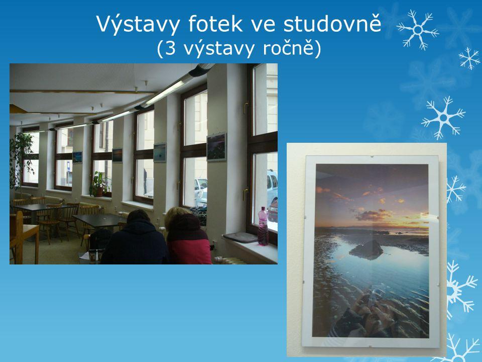 Výstavy fotek ve studovně (3 výstavy ročně)