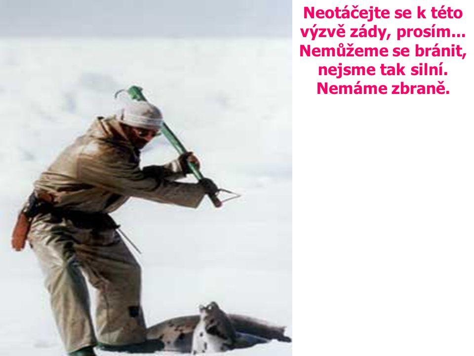 PROSÍME zastavte to ! Nemůžete zůstat lhostejní k takovému barbarství... Pomozte nám prosím!!!