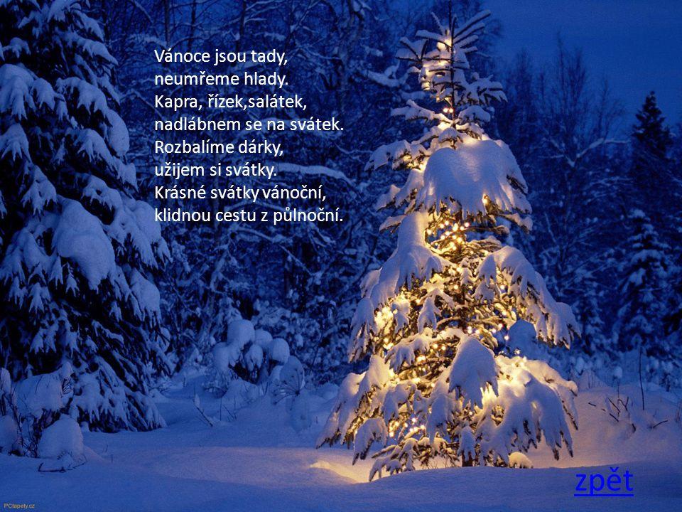 zpět Sedíme tiše a vdechujeme vůni jehličí snad je to klišé vánoční přání nejtišší.