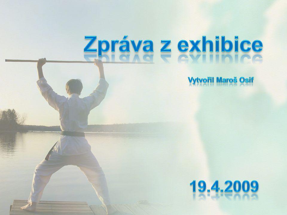 V podvečer 17.4.2009 jsem se společně s přítelkyní Mirkou a kamarádem Matúšem zúčastnil exhibice taekwondo I.T.F.