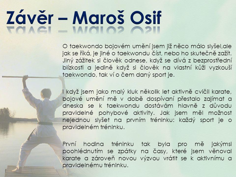 O taekwondo bojovém umění jsem již něco málo slyšel,ale jak se říká, je jiné o taekwondu číst, nebo ho skutečně zažít. Jiný zážitek si člověk odnese,