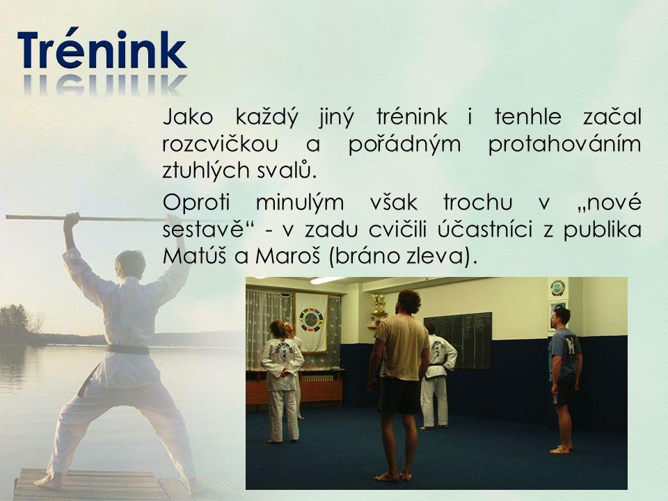 Za trpělivost při prvním tréninku děkuji Lukáši Linhatovi, který společně s Petrem Pecinou vedli můj první trénink taekwonda.