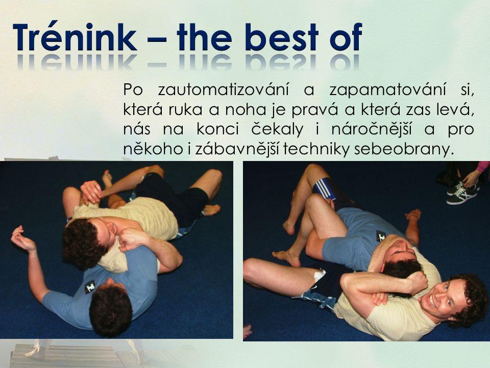 Účastníci sledovali ukázku bojového umění taekwondo ITF pod vedením Lukáše Linharta (III.