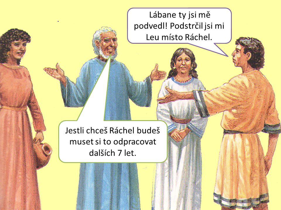 Lábane ty jsi mě podvedl! Podstrčil jsi mi Leu místo Ráchel. Jestli chceš Ráchel budeš muset si to odpracovat dalších 7 let.