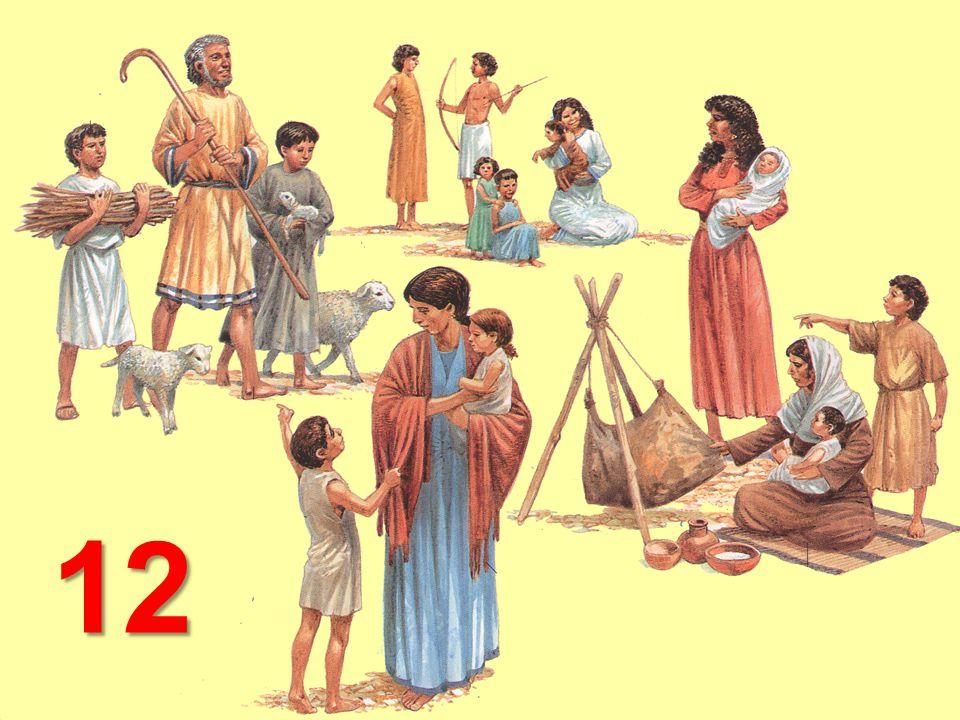 Jákob LeaRáchel Zilpa Bilha Rúben Šimeón Lévi Juda Isachar Zabulón Josef Benjamín Gád Ašer Dan Neftalí 12 synů