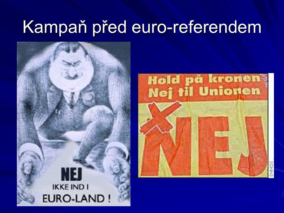 Kampaň před euro-referendem