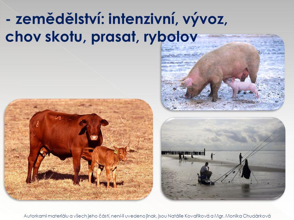 - zemědělství: intenzivní, vývoz, chov skotu, prasat, rybolov Autorkami materiálu a všech jeho částí, není-li uvedeno jinak, jsou Natálie Kovaříková a