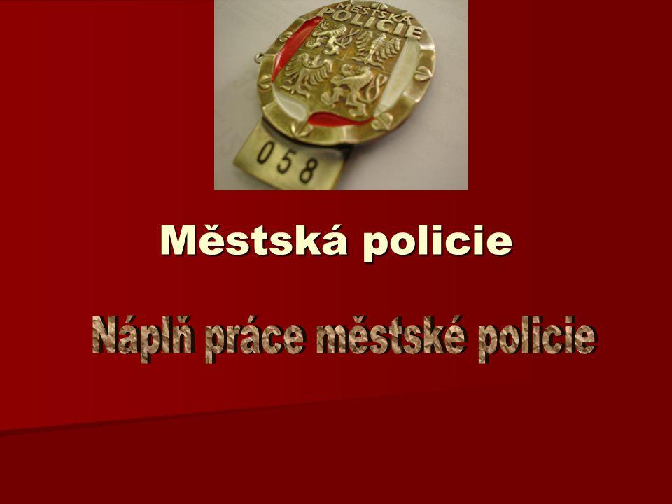 Služby občanům Policisté spolupracují s občany