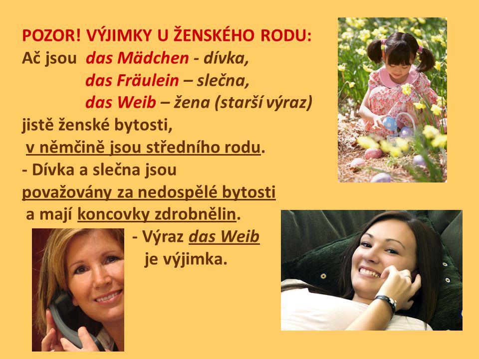C) STŘEDNÍ ROD: NEUTRA: člen DAS: 1.Nedorostlé bytosti: (das Kind – dítě) 2.Zdrobněliny: koncovky –chen: (Häuschen – domeček) -lein: (Blümelein – kytička) 3.