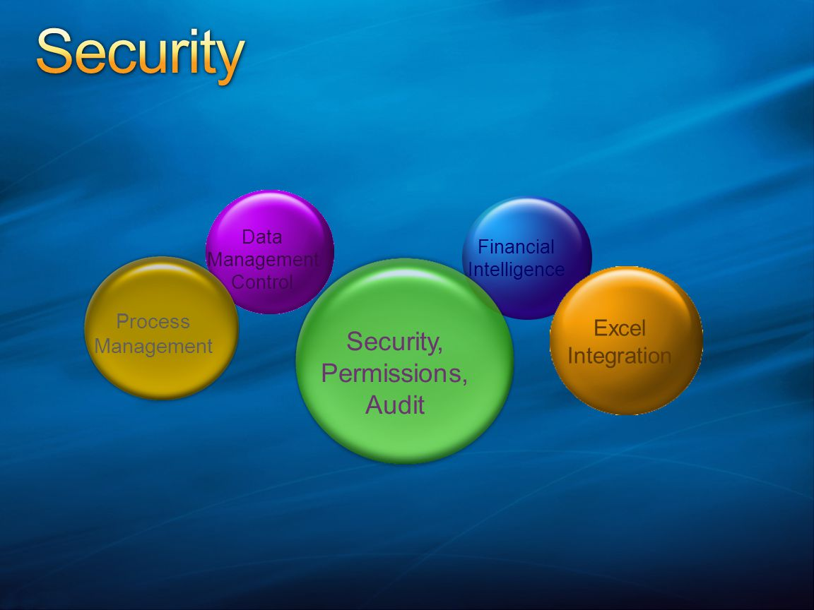 Data Management Control Financial Intelligence Process Management Security, Permissions, Audit Excel Integration