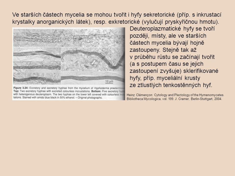 Ve starších částech mycelia se mohou tvořit i hyfy sekretorické (příp. s inkrustací krystalky anorganických látek), resp. exkretorické (vylučují prysk