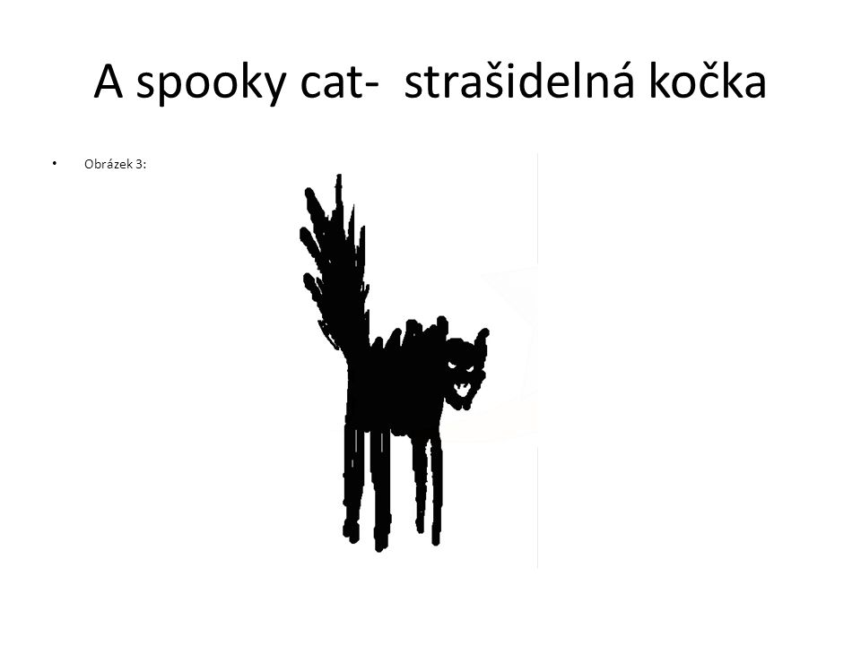 A spooky cat- strašidelná kočka Obrázek 3: