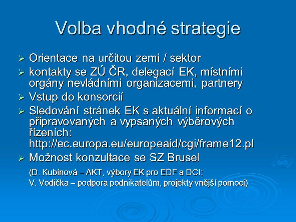 Volba vhodné strategie  Orientace na určitou zemi / sektor  kontakty se ZÚ ČR, delegací EK, místními orgány nevládními organizacemi, partnery  Vstu