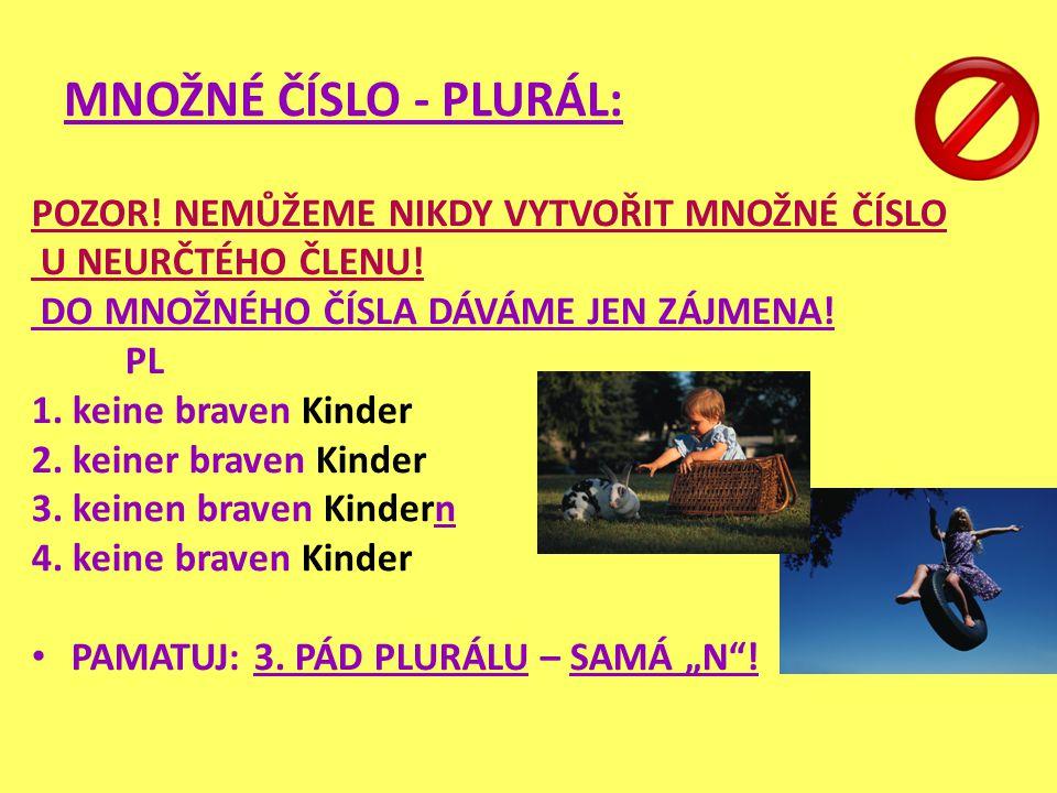 MNOŽNÉ ČÍSLO - PLURÁL: POZOR! NEMŮŽEME NIKDY VYTVOŘIT MNOŽNÉ ČÍSLO U NEURČTÉHO ČLENU! DO MNOŽNÉHO ČÍSLA DÁVÁME JEN ZÁJMENA! PL 1. keine braven Kinder