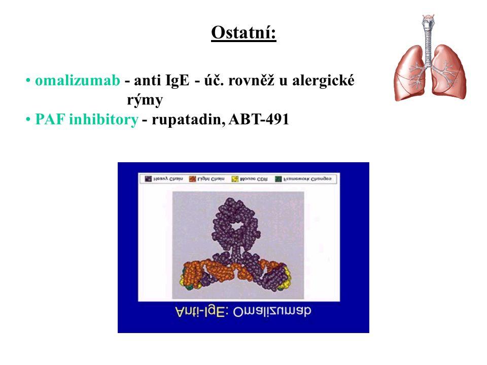 Ostatní: omalizumab - anti IgE - úč. rovněž u alergické rýmy PAF inhibitory - rupatadin, ABT-491