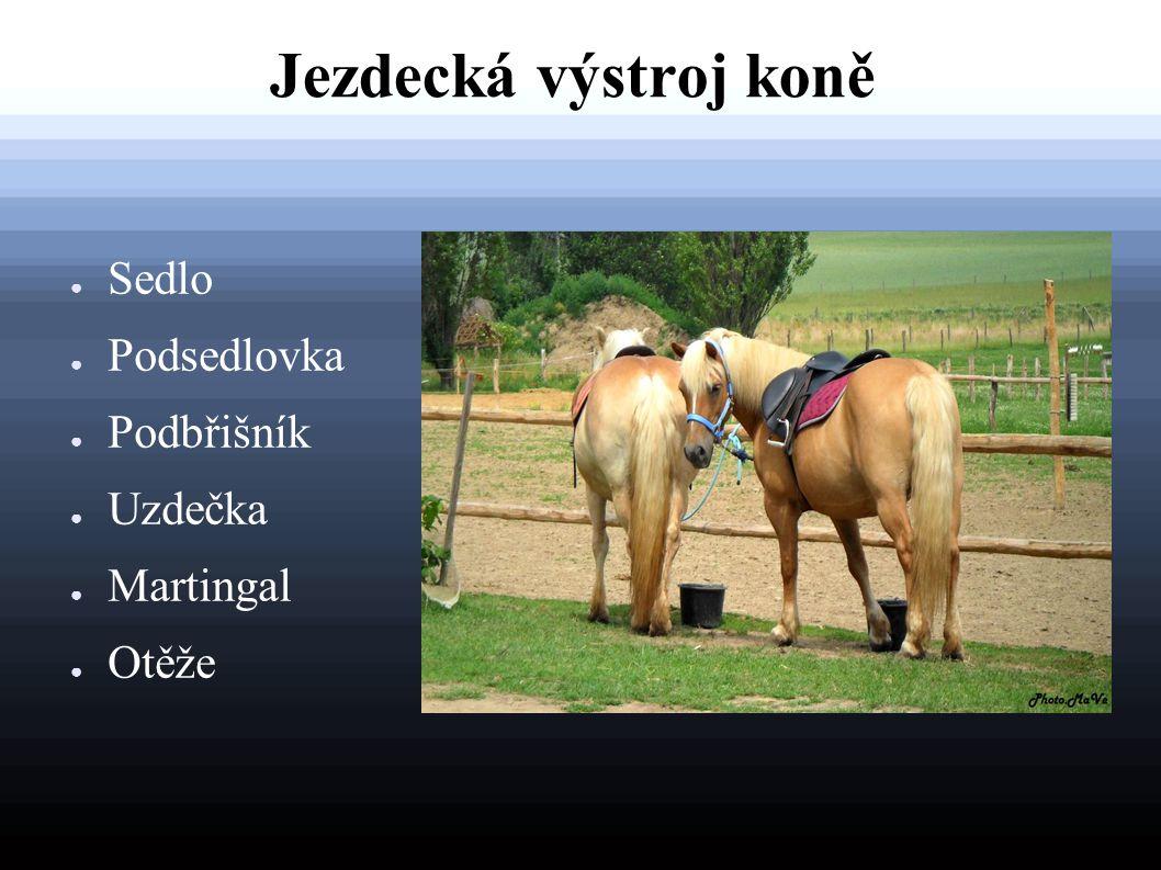 Jezdecká výstroj koně ● Sedlo ● Podsedlovka ● Podbřišník ● Uzdečka ● Martingal ● Otěže
