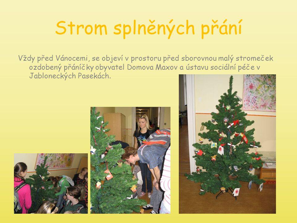 Strom splněných přání Vždy před Vánocemi, se objeví v prostoru před sborovnou malý stromeček ozdobený přáníčky obyvatel Domova Maxov a ústavu sociální