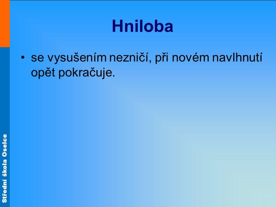 Střední škola Oselce Hniloba se vysušením nezničí, při novém navlhnutí opět pokračuje.