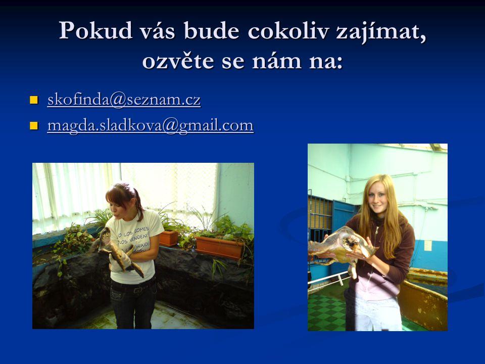 Pokud vás bude cokoliv zajímat, ozvěte se nám na: skofinda@seznam.cz skofinda@seznam.cz skofinda@seznam.cz magda.sladkova@gmail.com magda.sladkova@gmail.com magda.sladkova@gmail.com