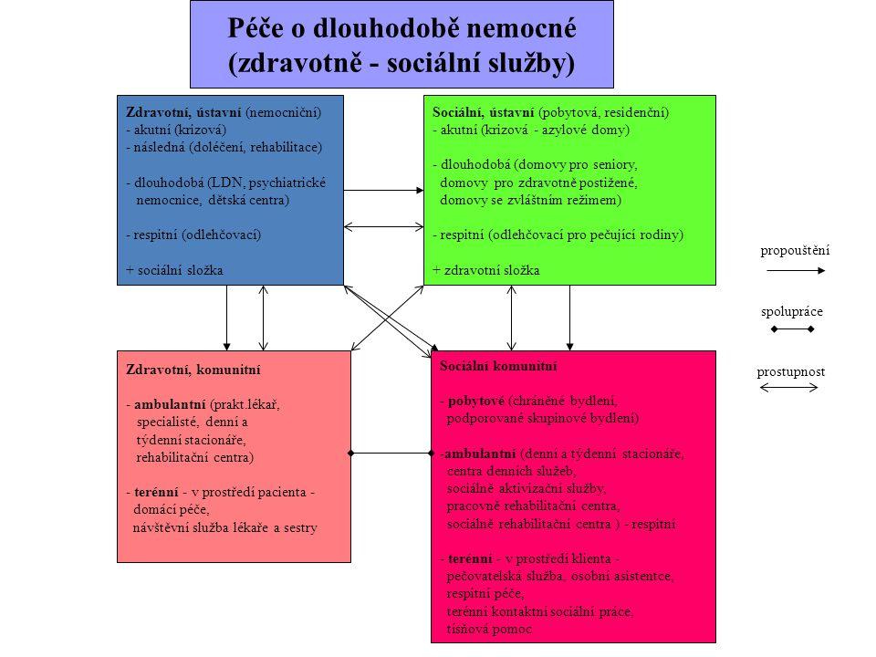 Zdravotní, ústavní (nemocniční) - akutní (krizová) - následná (doléčení, rehabilitace) - dlouhodobá (LDN, psychiatrické nemocnice, dětská centra) - re