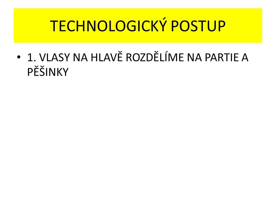TECHNOLOGICKÝ POSTUP 1. VLASY NA HLAVĚ ROZDĚLÍME NA PARTIE A PĚŠINKY